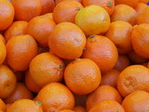 Bright zesty oranges. A background of oranges taken at a fruit market stall Royalty Free Stock Photos
