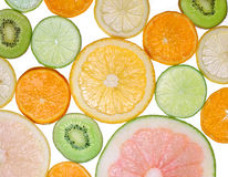 Brighten citrus slices. On a white stock images