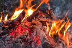 A brightly blazing fire in an autumn forest. Bonfire closeup Stock Photography