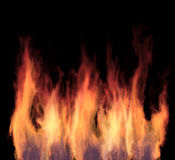 Brightly burning fire tongues Stock Image