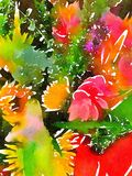 Brightly colored abstract floral watercolor painting Stock Photos