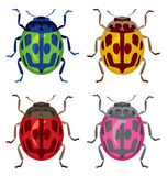 Brightly colored beetles Royalty Free Stock Photo
