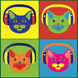 Brightly colored cats in the music headphones stock photos