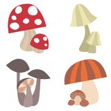 Brightly Colored Different Types of Mushrooms illustrated Set Vector Royalty Free Stock Photo