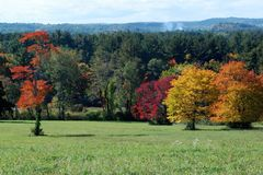 Brightly colored field on a sunny mid fall New England day. Oak trees, red, orange yellow leaves, smoke in Stock Image