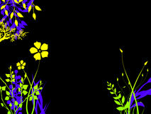 Brightly Colored Foliage Flower Plants At Night Royalty Free Stock Images