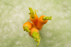 Brightly colored four carrots placed vertically in Royalty Free Stock Images