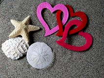 Linked Valentine`s hearts on sand with other beach treasures. Brightly colored and linked Valentine`s hearts displayed amongst other beautiful natural beach royalty free stock images