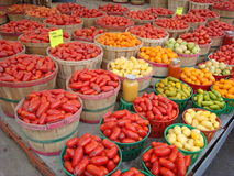Brightly colored vegetables at Montreal Market. Tubs of brightly colored peppers and fruits dazzle at a Montreal Quebec market stock image
