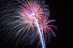 Brightly colorful fireworks Royalty Free Stock Images