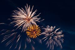 Brightly colorful fireworks Royalty Free Stock Photo