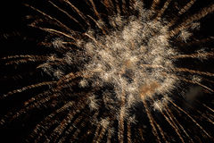 Brightly colorful fireworks and salute Royalty Free Stock Image