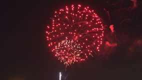 Brightly colorful fireworks and salute of various colors in the night sky, stock video