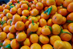 Brightly and juicy oranges Stock Photo