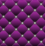 Brightly lilac edging of door Royalty Free Stock Images