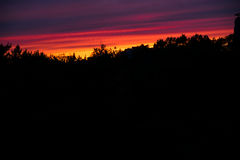 Brightly painted sky above the forest Royalty Free Stock Images