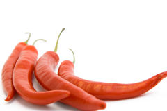 Brightly-red cayenne isolated. Brightly-red cayenne on a white background Royalty Free Stock Photo