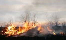 Brightness of fire Stock Photo