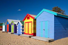 Brighton Beach Bathing Boxes Arkivfoto