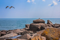 Brighton Beach Duluth 8. Brighton Beach on Lake Superior in Duluth Minnesota Royalty Free Stock Photo