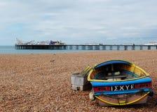 Brighton Beach Gabbiano Immagine Stock