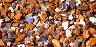 Brighton beach pebbles Royalty Free Stock Images