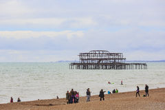 Brighton beach and pier Stock Images