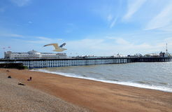 Brighton Pier, Brighton, Angleterre, R-U photo stock
