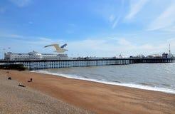Brighton Pier Brighton, England, UK Arkivfoto