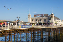 Brighton Pier dans le Sussex est photos libres de droits