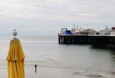 Brighton Pier, vista dalla spiaggia Turista e gabbiano 2 Immagini Stock Libere da Diritti