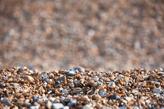 Brighton's Pebble Beach during Summer Royalty Free Stock Photography