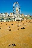 Brighton-Seeseite Stockbild