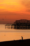 brighton set sun Royaltyfria Foton
