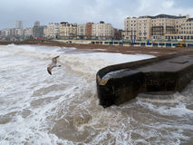 BRIGHTON, SUSSEX/UK - 15. FEBRUAR: Brighton nach dem Sturm herein Stockfotografie