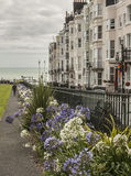 Brighton town - flowers and buildings. This image shows a beach in Brighton, England with some people walking and chilling Royalty Free Stock Image