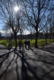 Silhouetted park walking royalty free stock photos