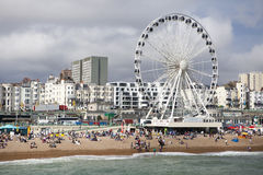 The Brighton Wheel Royalty Free Stock Photography