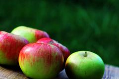 Brights aapples on wooden desk board Stock Images