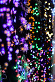 Brights LED lights Christmas garland Royalty Free Stock Photo