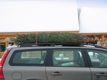 brigning för jul för sidotree home sikt Royaltyfri Foto