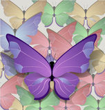 Brigt lilac butterfly Royalty Free Stock Photography
