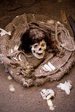 Brij, Nazca, Peru royalty-vrije stock afbeeldingen
