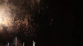 Brilhantemente os fogos-de-artifício coloridos no preto escuro colorem o fundo Flores bonitas dos fogos-de-artifício no céu notur vídeos de arquivo