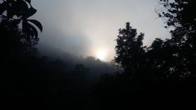 Brilho da manhã Foto de Stock Royalty Free