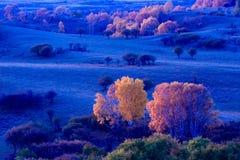 Brilho da manhã Imagem de Stock Royalty Free