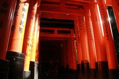 Brilho do inari de Fushimi Foto de Stock Royalty Free