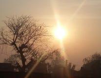 brilho do sol imagens de stock royalty free