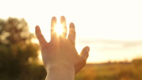 Brilho do sol da noite através dos dedos filme