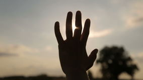 Brilho do sol da noite através dos dedos vídeos de arquivo